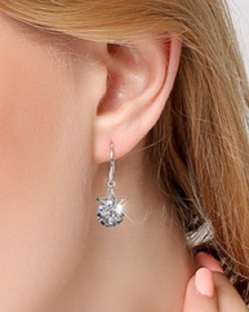 All-match earrings temperament accessories for women