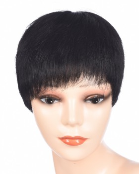 Middle-aged short straight hair unisex human hair