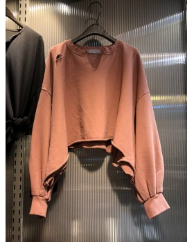Holes autumn short hoodie loose long sleeve slim tops