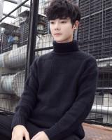 Pure long sleeve Korean style autumn and winter sweater for men
