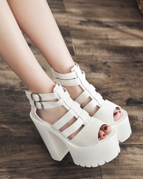 Summer sandals high-heeled shoes for women