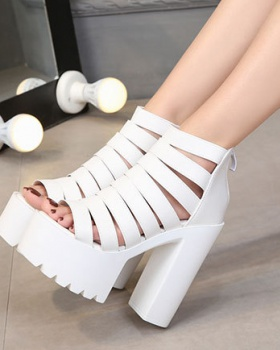 Nightclub shoes Korean style high-heeled shoes for women