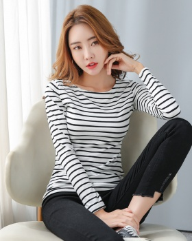 Spring long sleeve bottoming shirt large yard stripe T-shirt