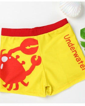 Vacation printing sandy beach child boy swim pants
