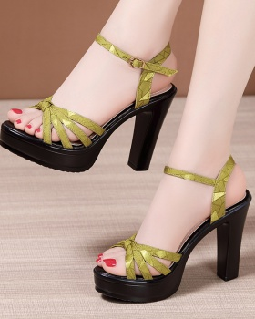 All-match summer sandals thick thick crust platform