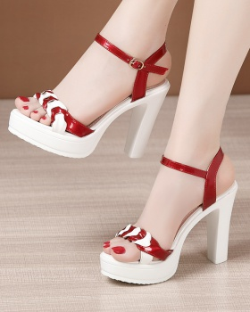 Summer all-match sandals thick platform for women