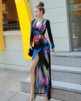 Slim long sleeve dress printing long dress for women