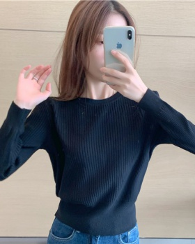 Autumn bottoming sweater winter Korean style tops for women