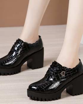 Thick autumn and winter shoes crocodile platform