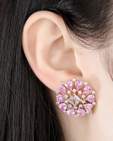 Korean style earrings stud earrings for women